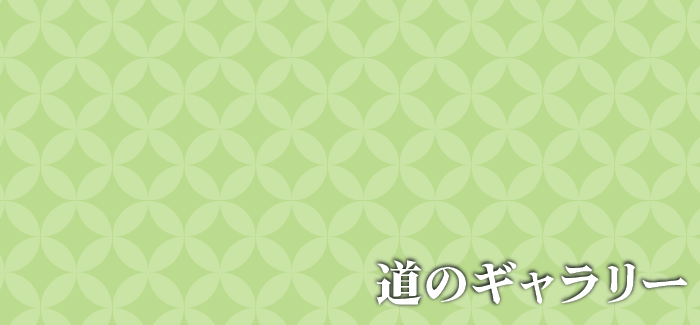 山崎 由美子(染の里おちあい)